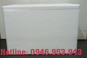 thùng xốp RT94